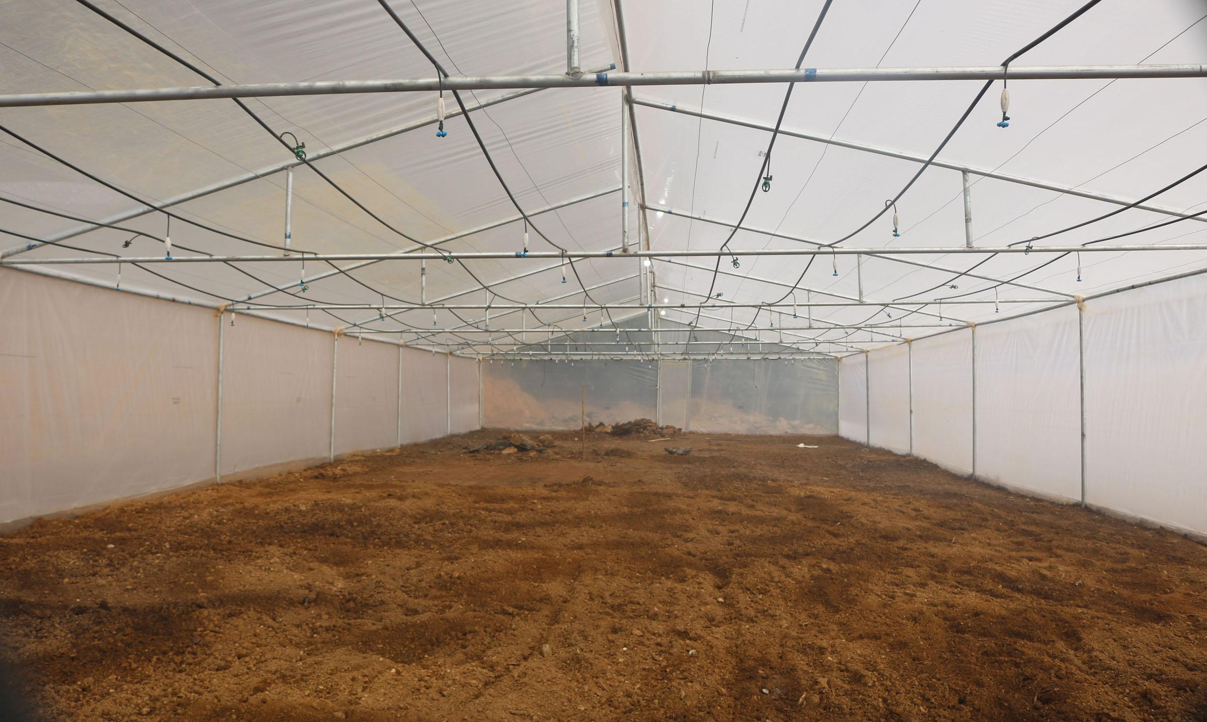 कृषिमा आधुनिक प्रविधि अपनाउँदै युवा किसान गङ्गाबहादुर