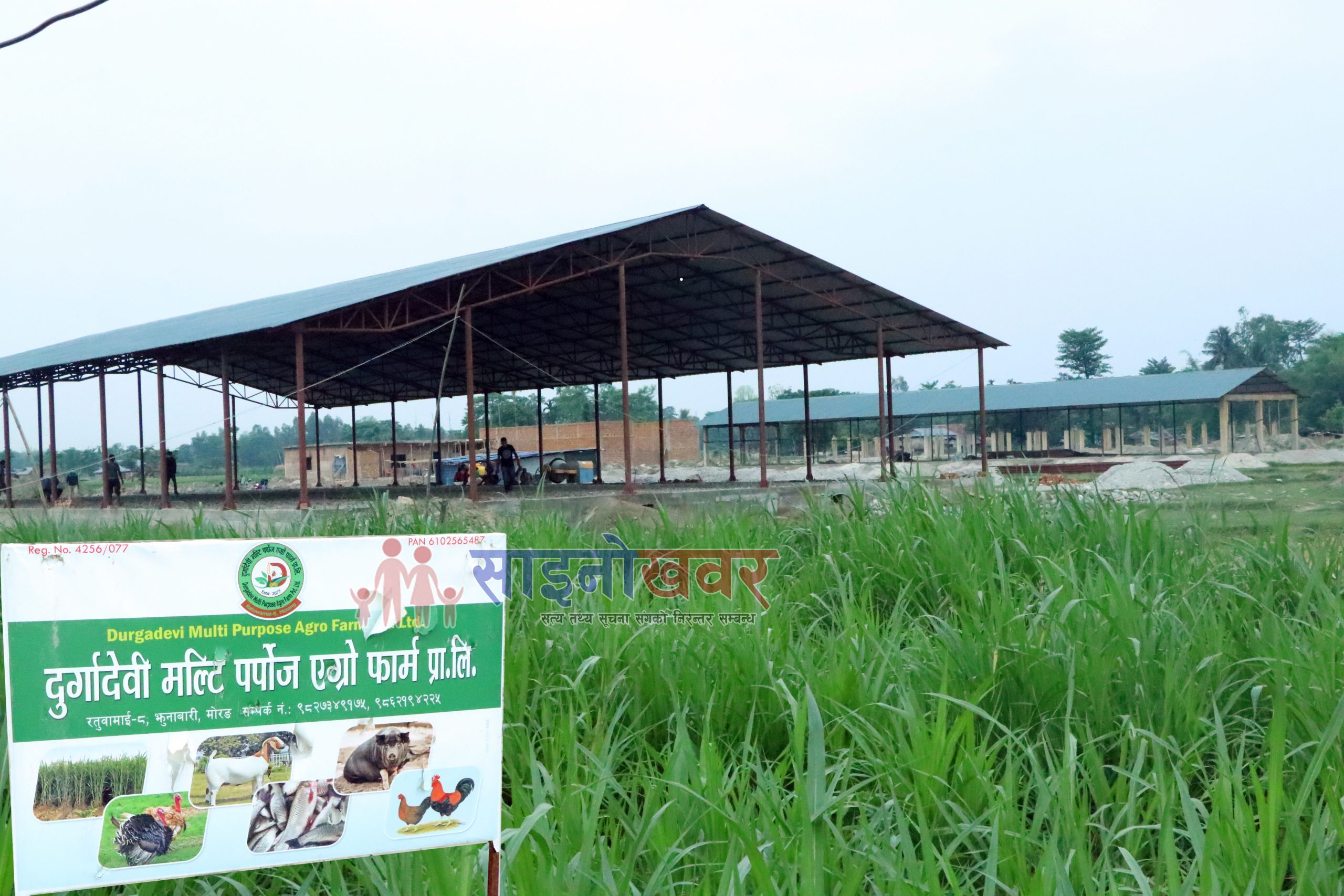 मोरङको रतुवामाईमा १२ करोडको लगानिमा कृषी फर्म